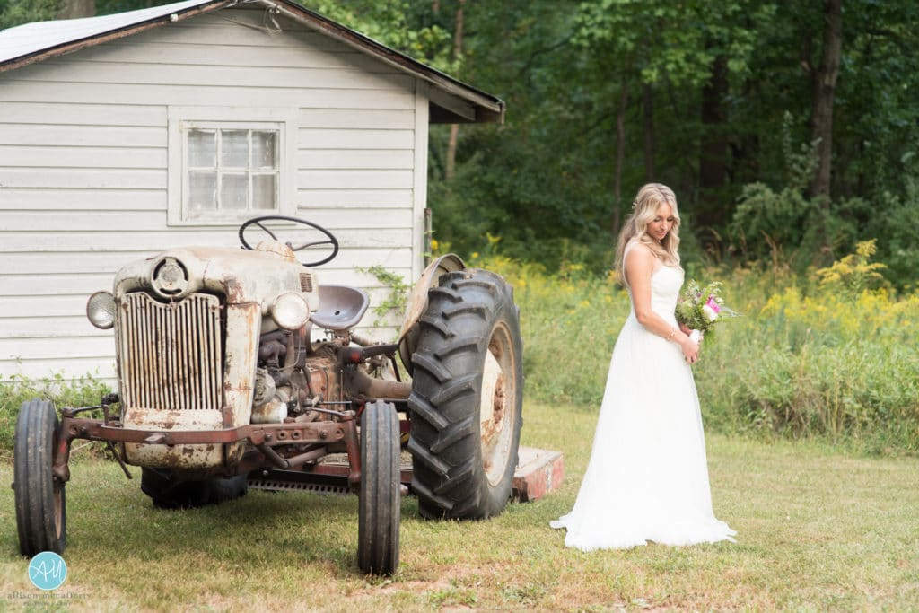 hillsborough wedding photographers