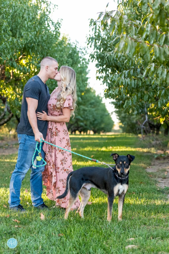Shady Brook Farm Engagement Photographer