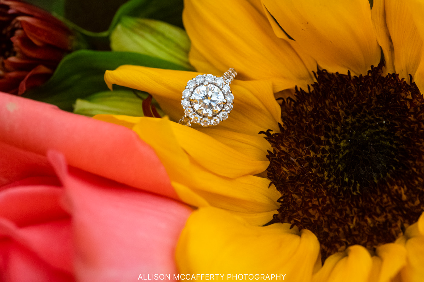 South Jersey Engagement Session Location