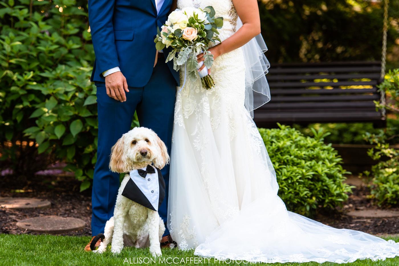 Exleys Christmas Tree Farm Wedding Photographers