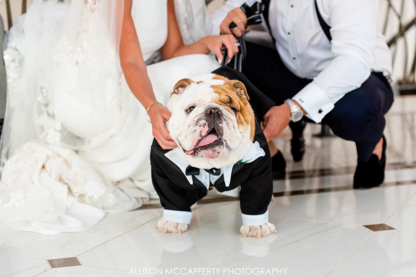 Crystal Point Yacht Club NJ Preferred Wedding Vendors
