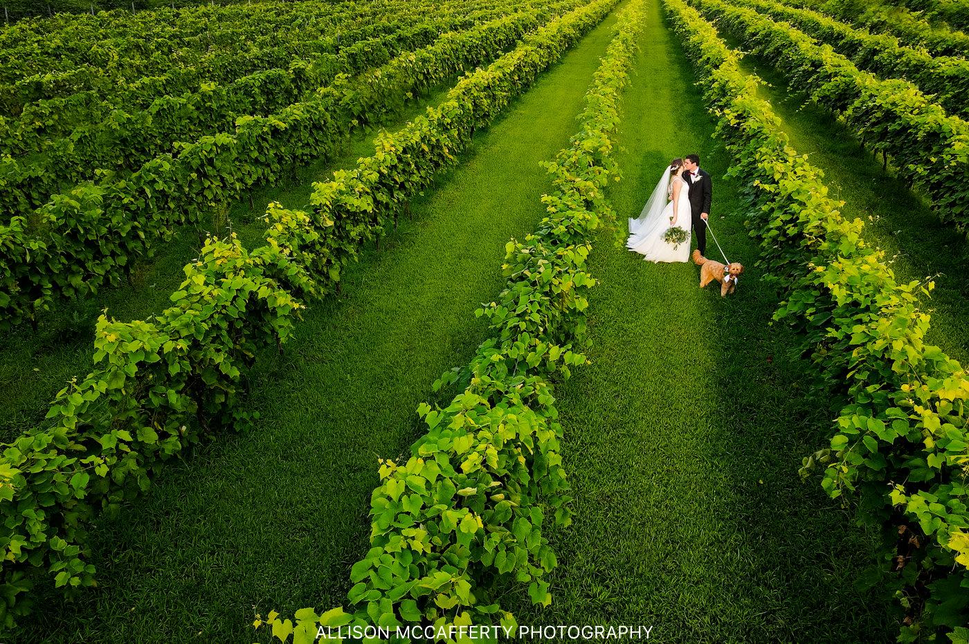 Erin & Paul   Valenzano's Winery Wedding